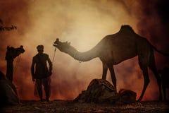 Kamelförsäljare från staden av Pushkar, Pushkar Mela fotografering för bildbyråer
