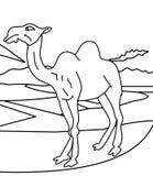Kamelfarbtonseite vektor abbildung