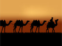 kamelhusvagn royaltyfri illustrationer