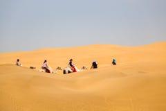 Kamelhusvagn i öken royaltyfri fotografi