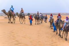Kamelhusvagn i den sahara öknen Fotografering för Bildbyråer
