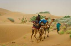 Kamelhusvagn som går till och med sanddyerna i öknen, Rajasthan, Royaltyfria Foton