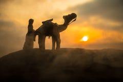 Kamelhusvagn som går till och med sanddyerna i den Sahara öknen, Marocco Kamel i ökenbegrepp arkivbild