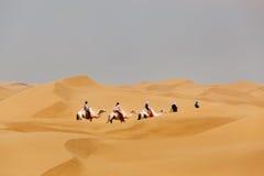 Kamelhusvagnridning i öken arkivfoto
