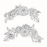 Kamelian blommar teckningen och skissar med linje-konst Royaltyfri Fotografi