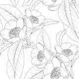Kameliowy kwiatu bukiet z liśćmi wykłada projekta rysunek Kwiecista naturalna bezszwowa deseniowa tekstura ilustracja wektor