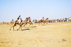 Kamellopp i Jaisalmer, Rajasthan arkivbilder