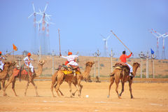 Kamelpolomatch under ökenfestival, Jaisalmer, Indien Royaltyfria Foton