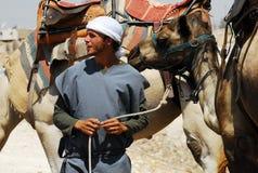 Kamelritt- och ökenaktiviteter i den Judean öknen Israel Royaltyfri Bild