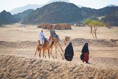 Kamelritt på öknen i Egypten Arkivbild