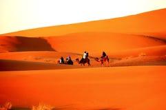 Kamelritt under soluppgång på den Sahara öknen Arkivbild