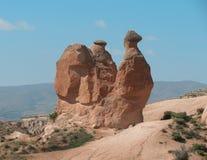 kamelrock Arkivbild