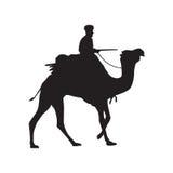 Kamelschattenbild Stockbilder