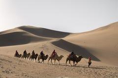 Kamelwohnwagen, der die Sanddünen in der Gobi-Wüste, C durchläuft Stockbilder