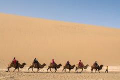 Kamelwohnwagen, der die Sanddünen in der Gobi-Wüste, C durchläuft Stockfoto