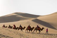 Kamelwohnwagen, der die Sanddünen in der Gobi-Wüste, C durchläuft Lizenzfreies Stockbild