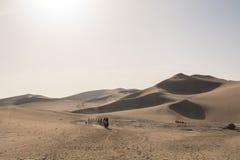 Kamelwohnwagen, der die Sanddünen in der Gobi-Wüste, C durchläuft Lizenzfreie Stockfotografie