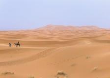 Kamelwohnwagen in der Sahara-Wüste lizenzfreie stockfotos