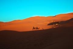 Kamelwohnwagen in der Wüste stockfoto
