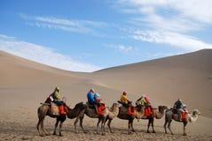 Kamelwohnwagen in der Wüste Stockfotos