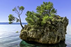 Kamen Brela - μικροσκοπικό διάσημο νησί σε Brela, Makarska Riviera, Κροατία στοκ φωτογραφία
