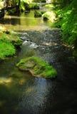 Kamenice flod Arkivbild