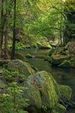 Kamenice flod II royaltyfri fotografi