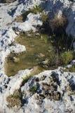 Kamenitza or temporary rain water pool stock image