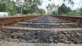Kamera bewegen sich vorwärts entlang die Eisenbahn mit exotischer tropischer Natur am Hintergrund Die Schienenstränge schließen o stock video footage