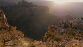 Kamera bewegt Recht über Büschen auf Felsen, episches Sonnenunterganghintergrundbeleuchtungspanorama des Überraschens von Grand C stock footage