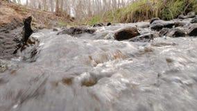 Kamera bewegt sich über sauberes Süßwasser eines Waldstromes, der über moosige Felsen läuft stock video
