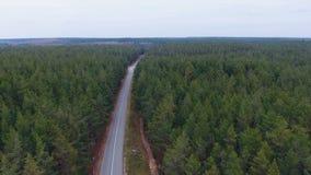 Kamera lot nad drogą w drewnie Zwarty las z pustą drogą od above antena zdjęcie wideo