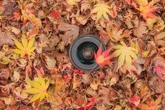 Kamera obiektyw nad barwionym liścia tłem w jesieni Zdjęcia Royalty Free
