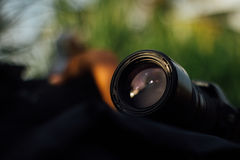 Kamera på fältet Arkivfoton