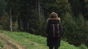 Kamera podąża młoda dziewczyna wycieczkowicza chodzi outdoors na tle lasu krajobraz zbiory