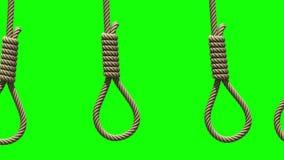 Kamera ruch wzdłuż Hangman kluczek na zieleni, bezszwowa pętla royalty ilustracja