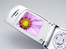 Kamera-Telefon lizenzfreie stockfotos