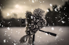 Kamera und die Winterlandschaft Stockbilder
