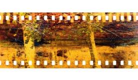 kamerafilm Arkivbild