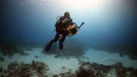 Kameramandykare som simmar djupt undervattens- i Röda havet arkivfilmer