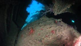 Kameramanntaucherschwimmen im Schiffswrack tief unter Wasser im Roten Meer stock video