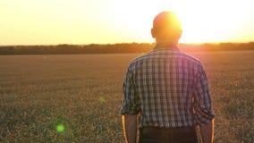 Kameran följer en man som går en bonde på ett vetefält på solnedgången lager videofilmer