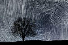 kameran medförda stjärnan för rotation s för rörelse för jordexponering långa bakkantr ensam tree Royaltyfria Bilder