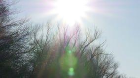 Kameraneigung oben von Flussoberfläche zu hellen Sonnenschein Abstrakte Beleuchtungshintergründe für Ihr Design Novi traurig, Ser stock video footage