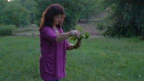 Kamerarörelse, den härliga äldre kvinnan väljer lösa blommor i en Forest Glade som fyller buketten arkivfilmer