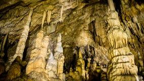 Kamerdetails bij Vartop-Gletsjerhol, Apuseni-Bergen, Roemenië royalty-vrije stock foto
