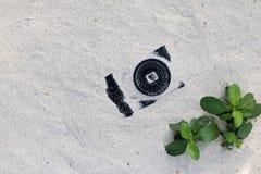 Kameror i sanden Arkivfoton