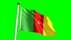 Kamerun-Flagge stock video
