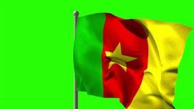 Kamerun-Staatsflagge, die auf Fahnenmast wellenartig bewegt stock footage