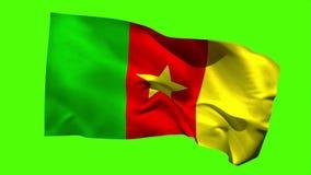 Kamerun-Staatsflagge, die in der Brise durchbrennt stock video